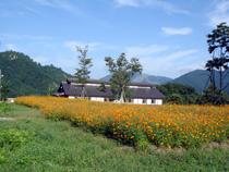 周辺の観光地(体験工房大源太と花の郷ダリア)