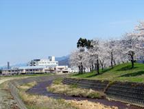 鎌倉桜ヶ丘公園